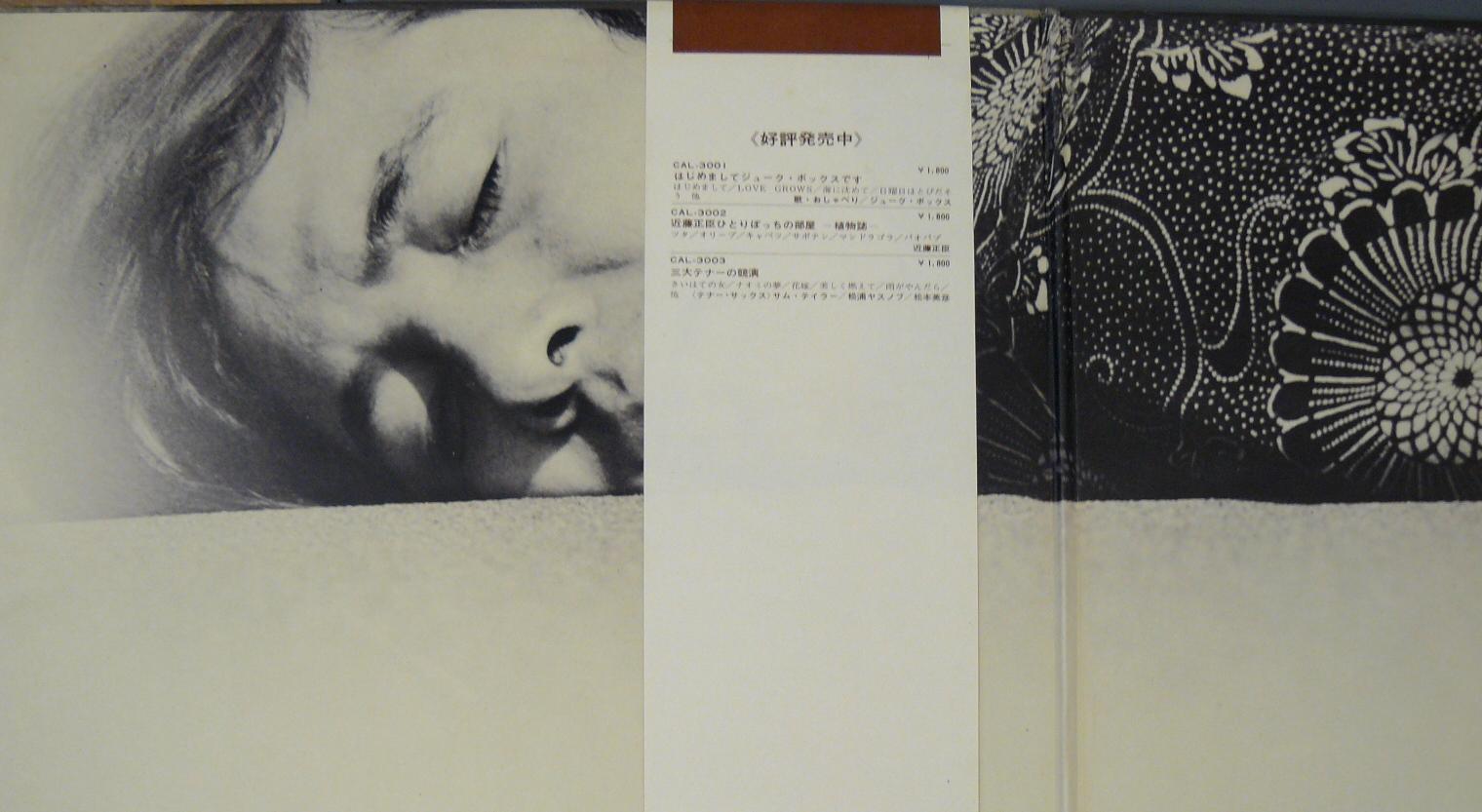 Akira Ishikawa His Count Buffalos Get Up