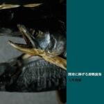 Toshiharo osato CD